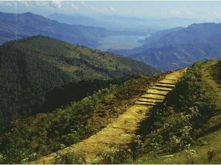 Pokhara to Panchase